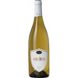 White wine Gotha Divino - Chardonnay in 75cl bottle