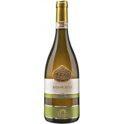 White wine bottle Brancato Fiano Di Avellino DOCG