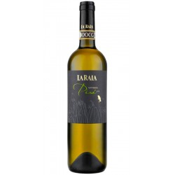 Biodynamic white wine Gavi DOCG Pise