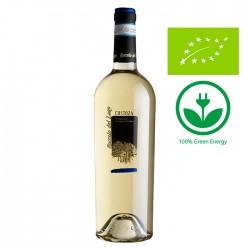 White wine Custoza DOC bottle