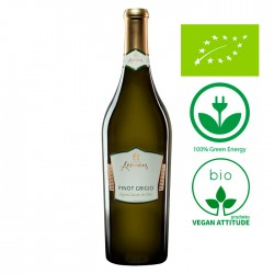 Pinot Grigio DOP Venezie BIO - Vegan wine bottle