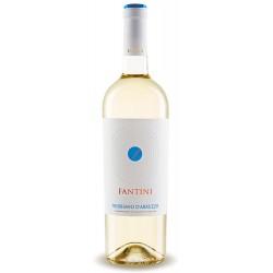 Italian white wine from abruzzo Fantini - Trebbiano D'Abruzzo DOC bottle