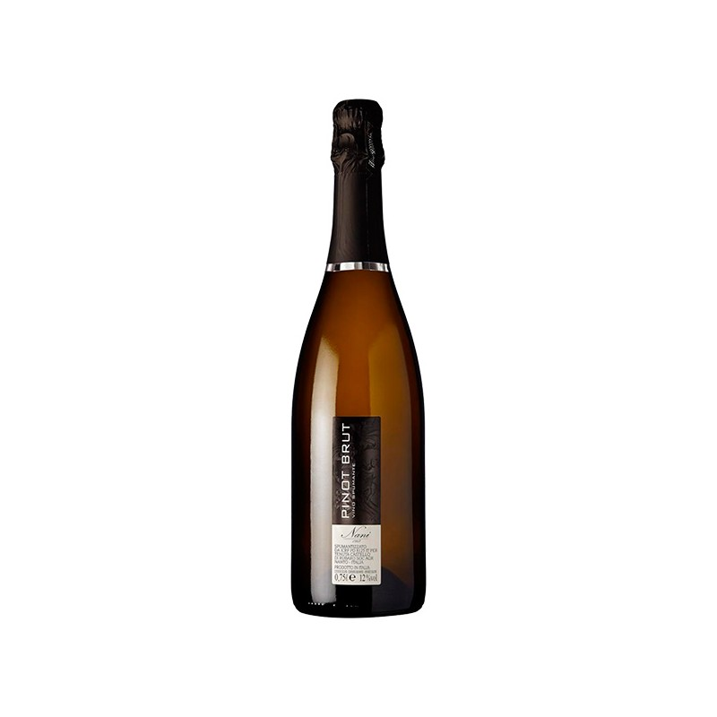 Italian Wine Pinot Brut Spumante bottle