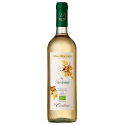 Italian wine Chardonnay IGT Veneto Orientale BIO