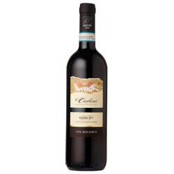 Italian red wine Merlot DOC Lison Pramaggiore BIO