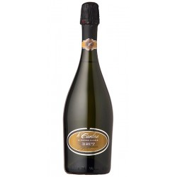 Italian Spumante Brut Le Carline BIO bottle