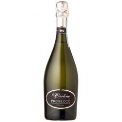 Italian sparkling wine Prosecco DOC Spumante Extra Dry BIO bottle