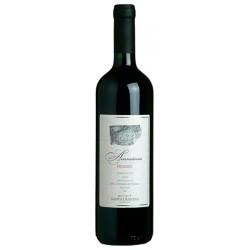 Italian Red wine Ammiana IGT Rosso del Veneto BIO bottle