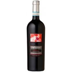 Italian Red wine Refosco Riserva DOC Lison Pramaggiore bottle