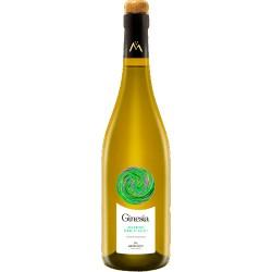 Organic white wine GINESIA PECORINO TERRE DI CHIETI in 75cl bottle