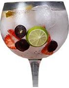 Gin liqueur
