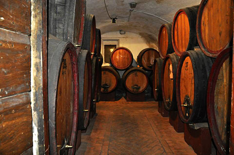 The Cellar in Italy